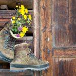 Bergwald Experience   Nachhaltigkeit leben